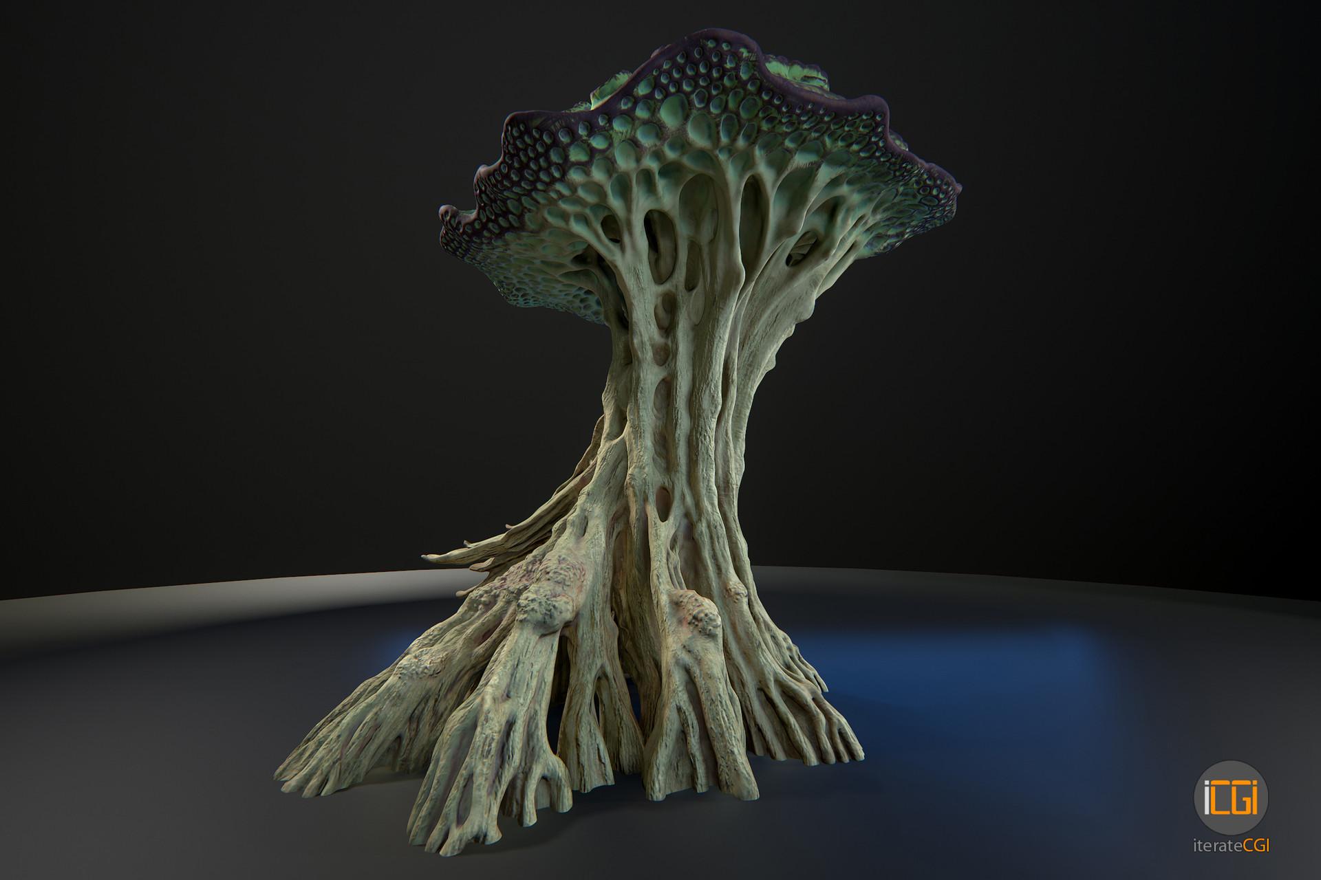 Johan de leenheer alien plant mushroom type2 3