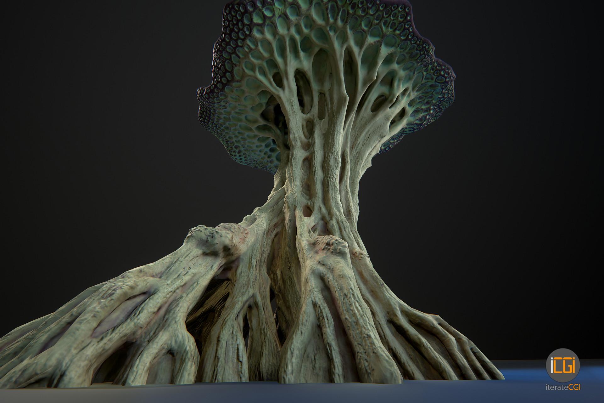 Johan de leenheer alien plant mushroom type2 20
