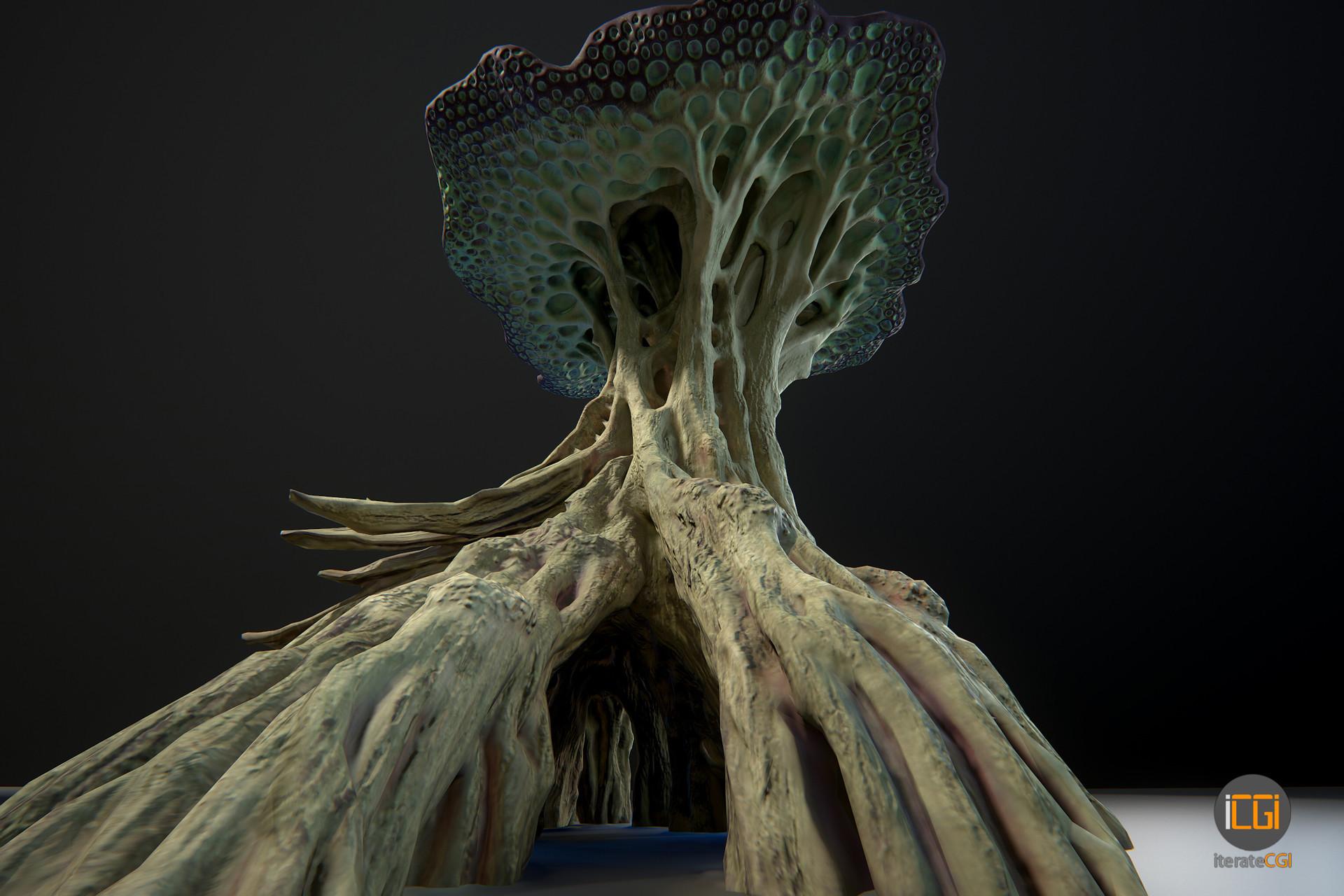Johan de leenheer alien plant mushroom type2 21