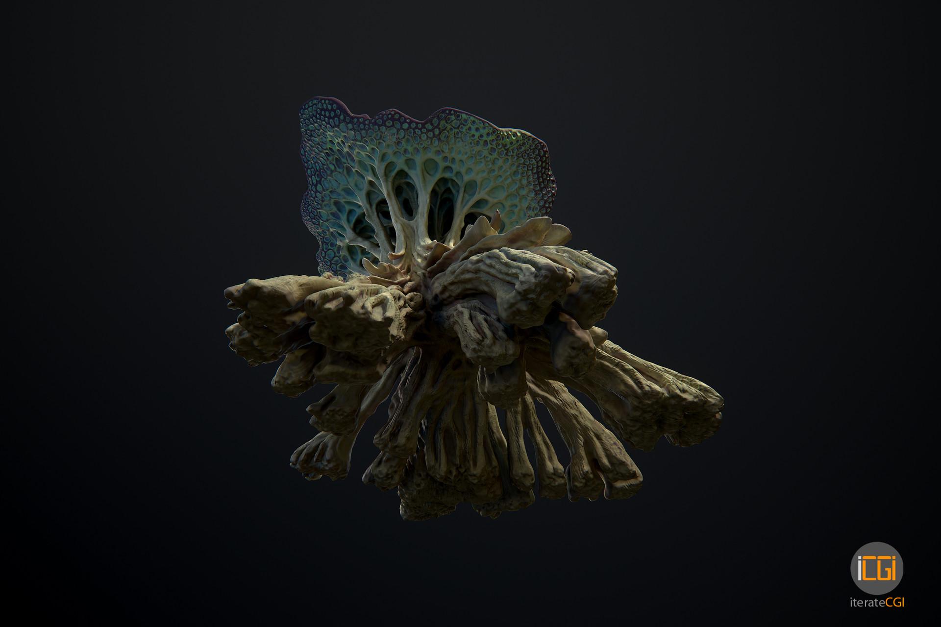 Johan de leenheer alien plant mushroom type2 27