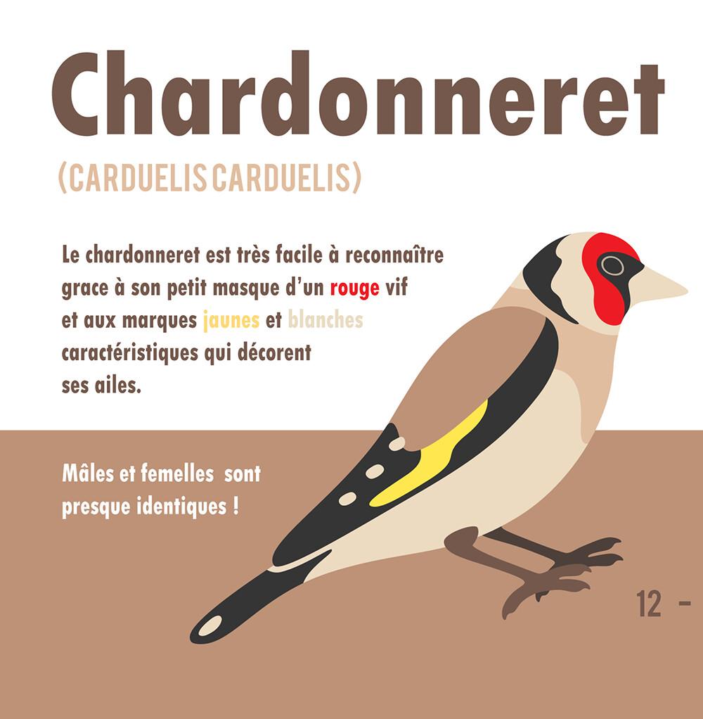 Clemence sanches chardonneret1