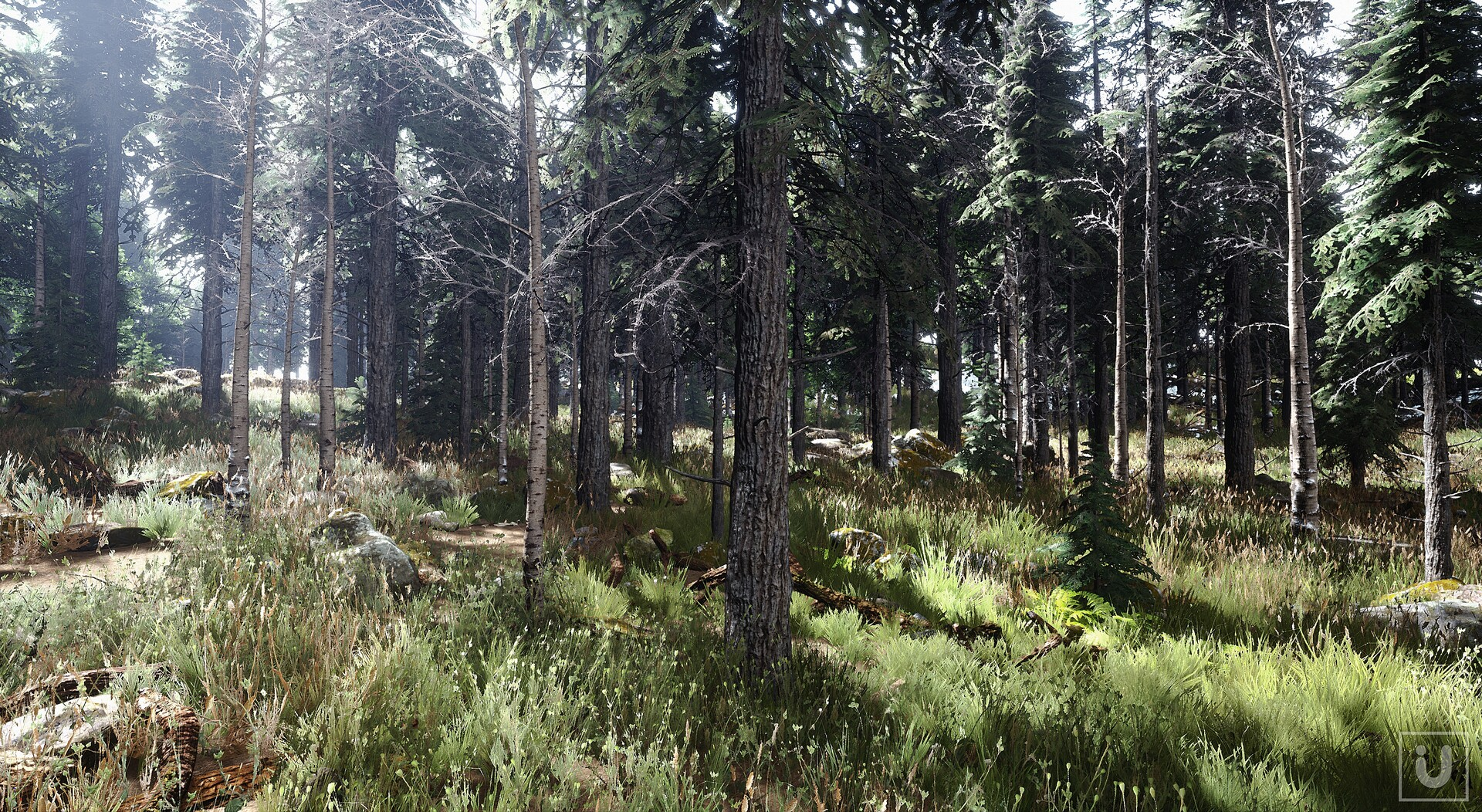 ArtStation - Unreal Engine - The Forest - Volumetric Fog and