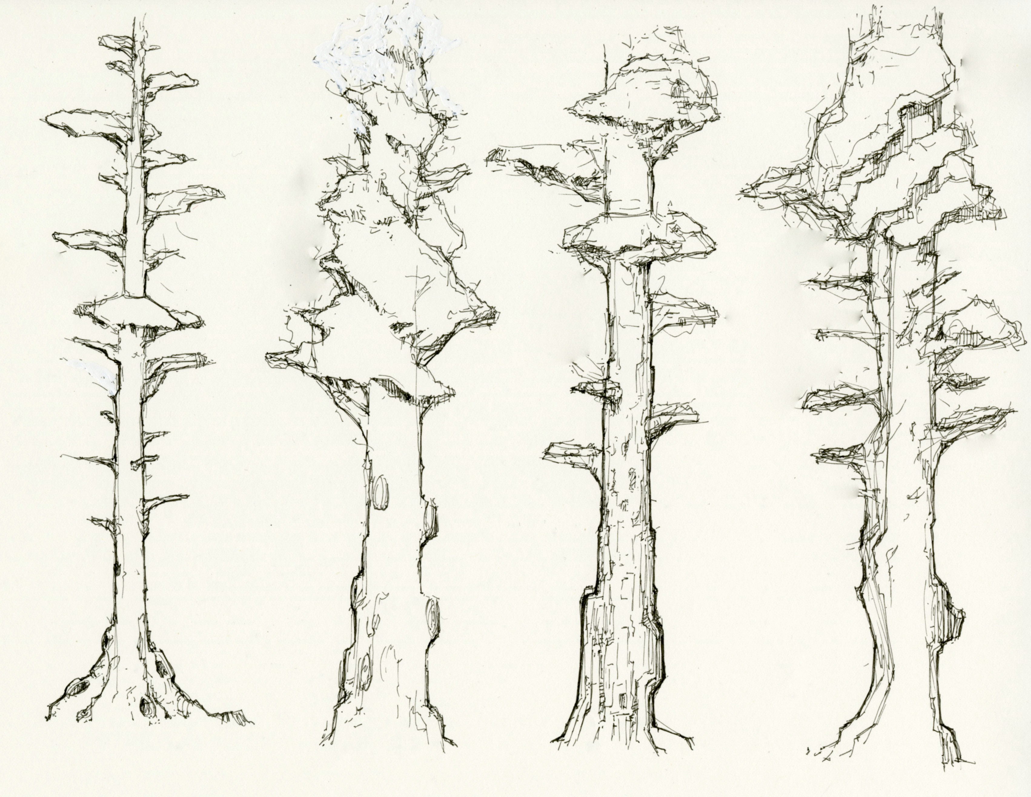 Trees ideations | Pen Sketch