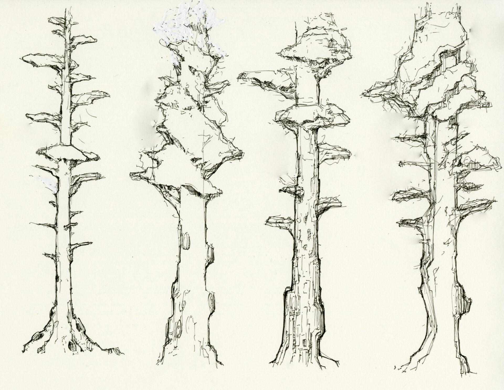 Sherif habashi 01 trees 02