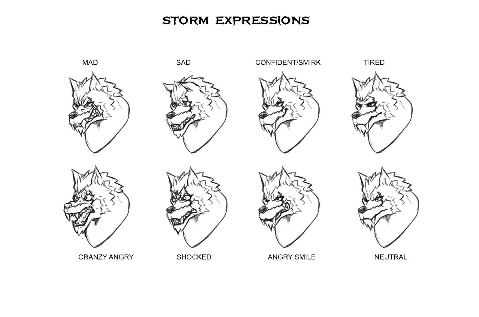 Ibrahim idris stormexpressions