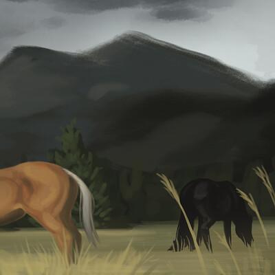 Meagen ruttan wyoming by horse 01 28 2019 001