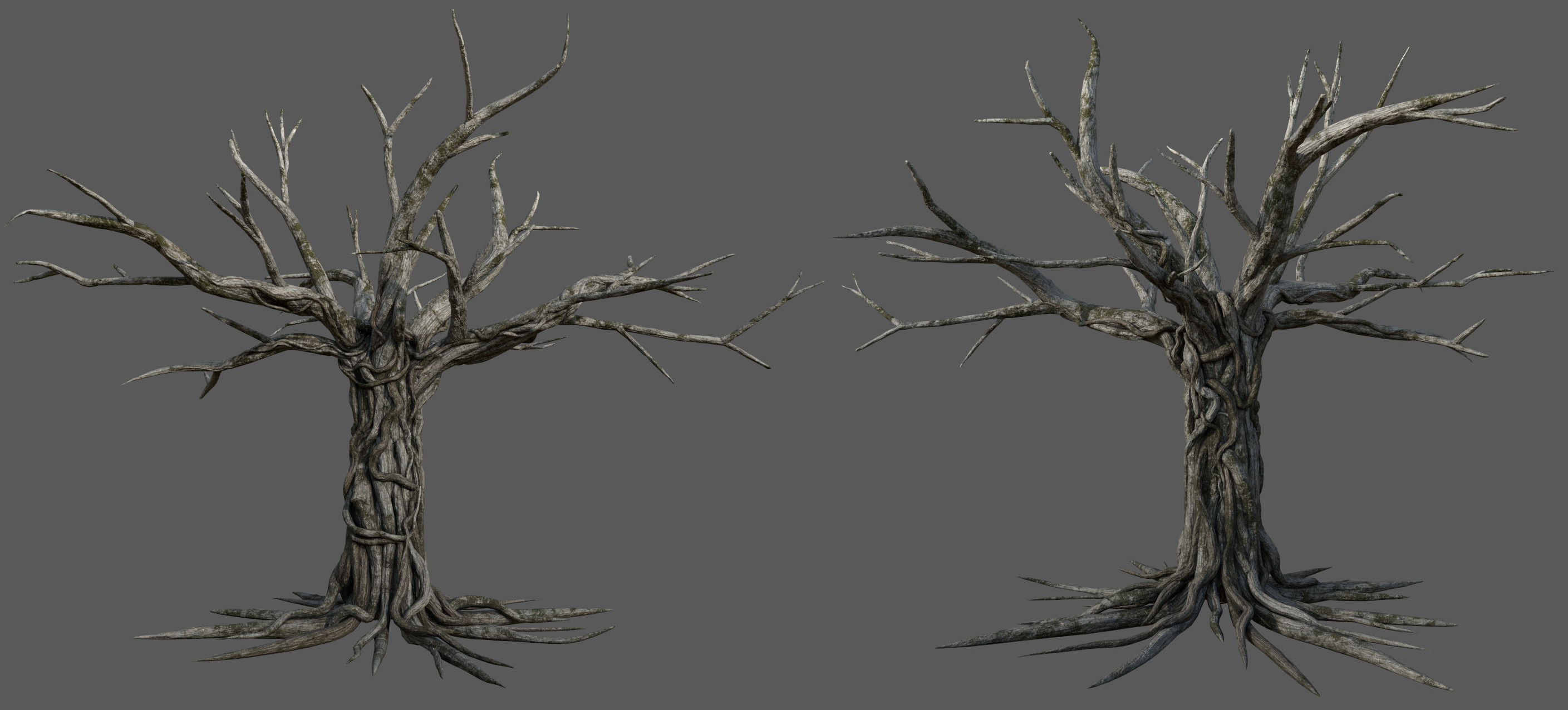 The Mugumo tree modeling and texturing. Its roots are straight in order to be rigged and animated.