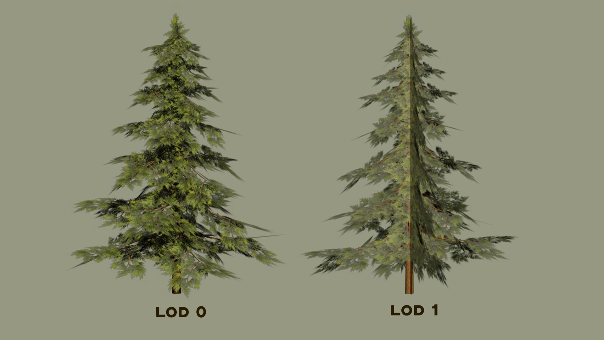 Jordan cameron sprucetree