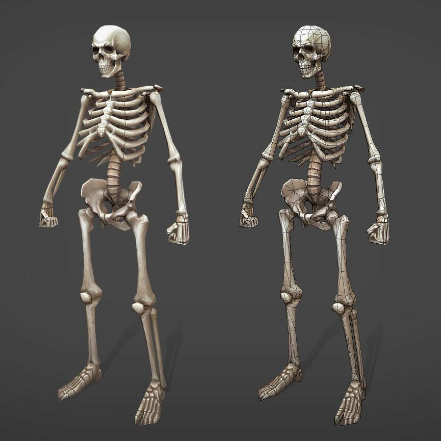Viktor saghy skeleton front