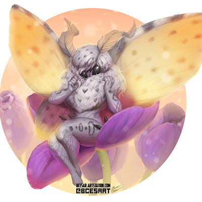 Bruno cesar fairy 2
