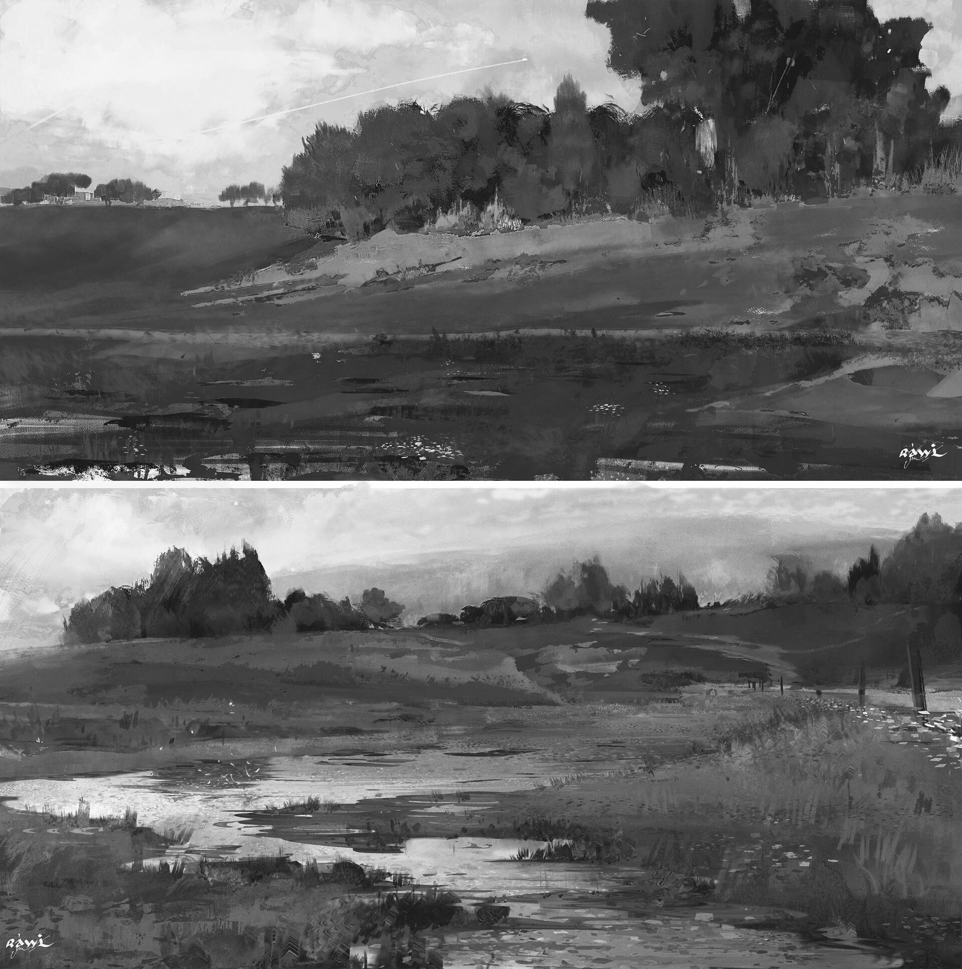 Ahmed rawi landscape study bnw