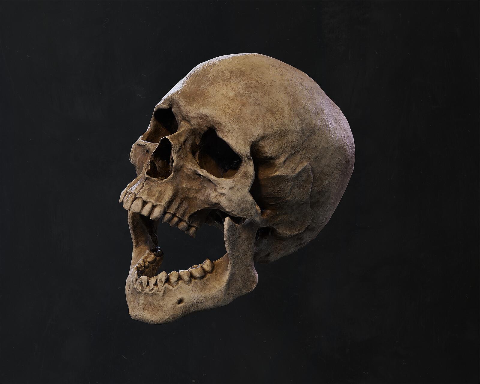 Ben nadler skull 003