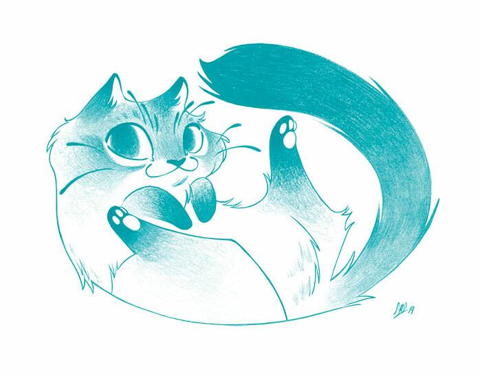 Sara ruiz prado 3 gato