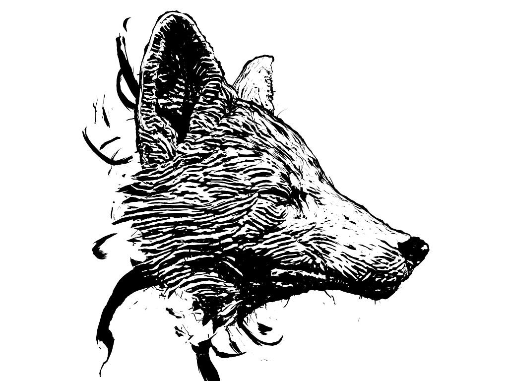 David hagemann foxside