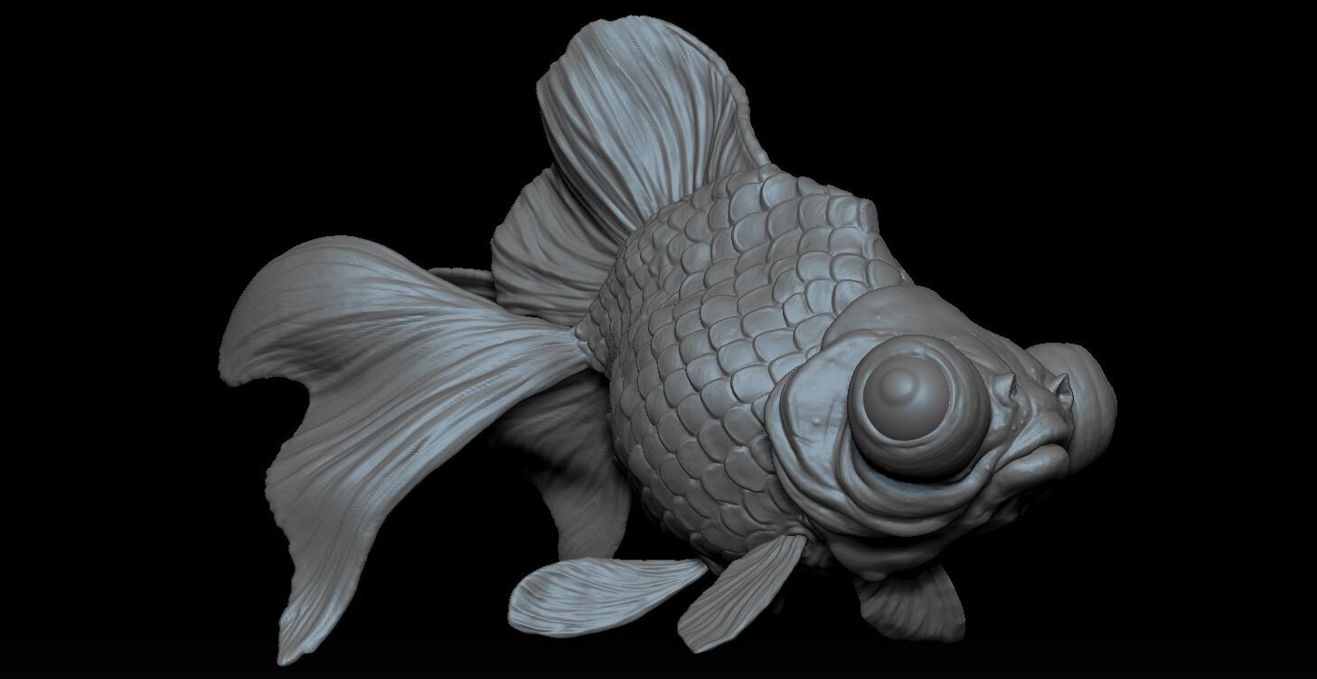Brian dolan fish2
