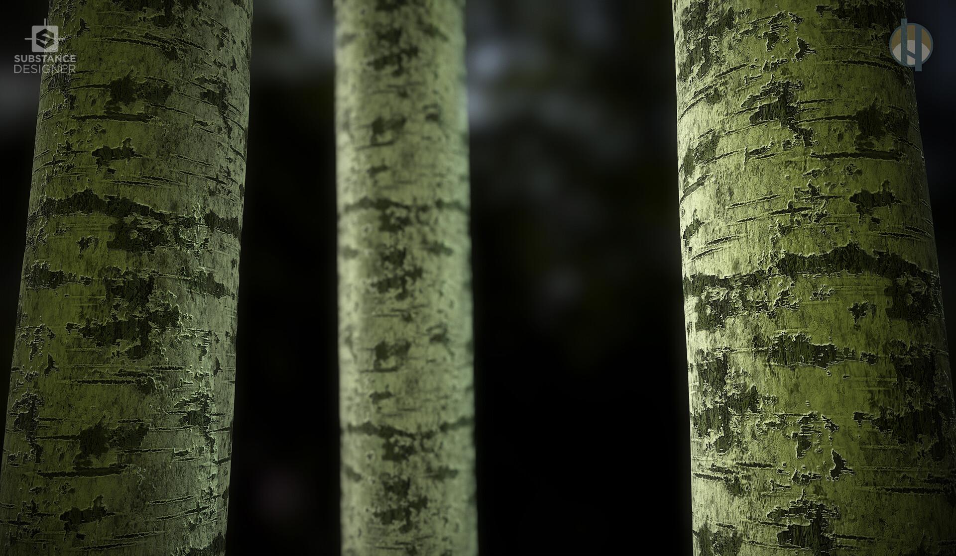 Justin hrala h3d bark birch scene