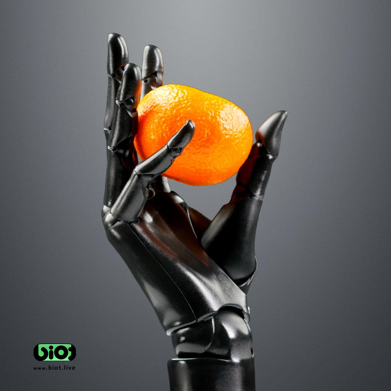 Sviatoslav gerasimchuk robotic hand biot hold a fruit