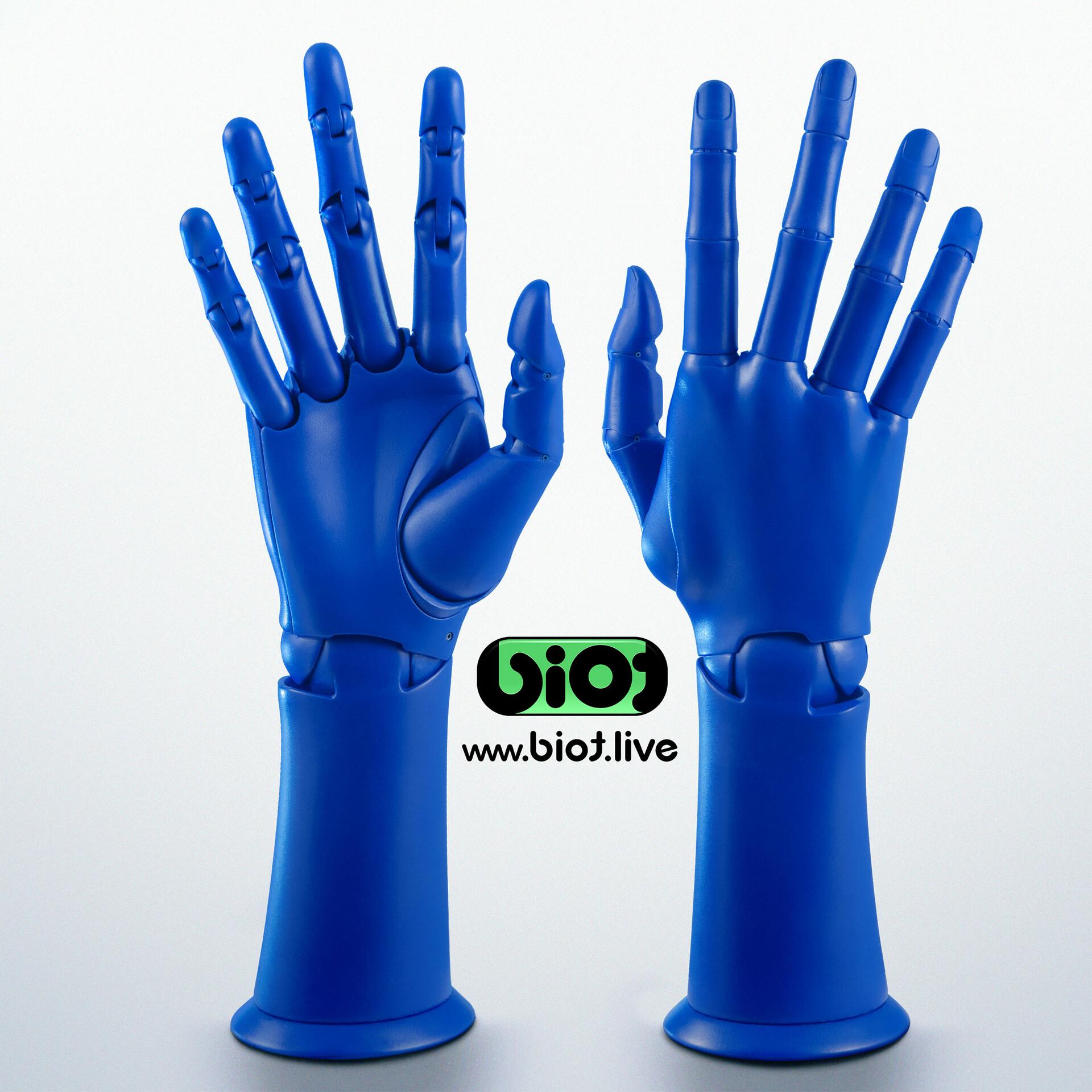 Sviatoslav gerasimchuk blue biot twin hand