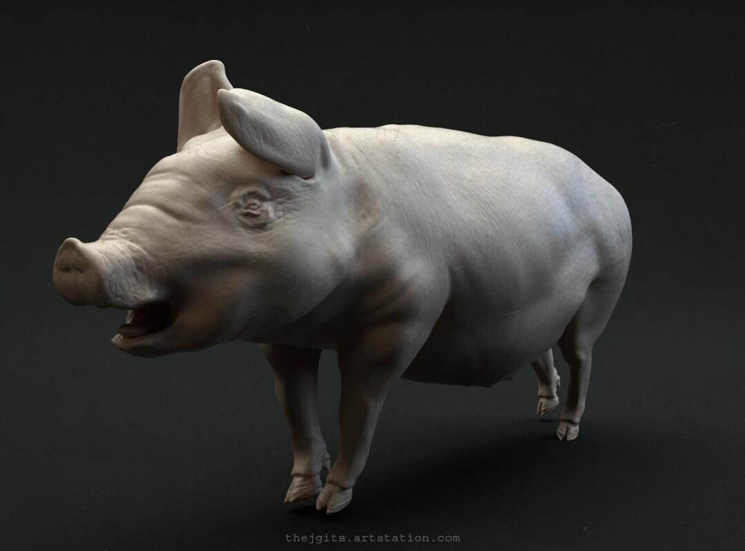 Pig Prop