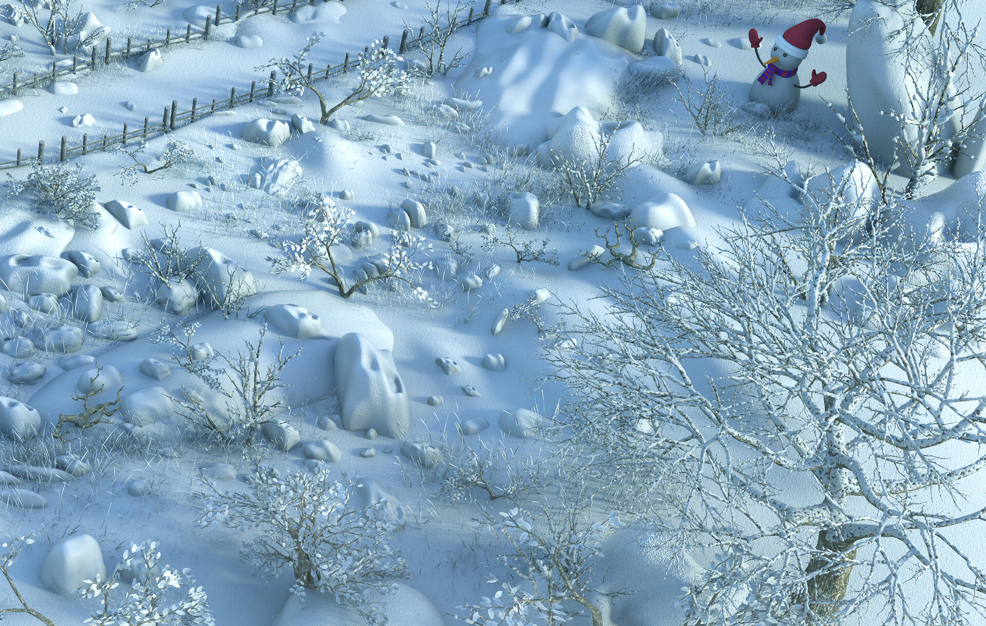 Marc mons snow5