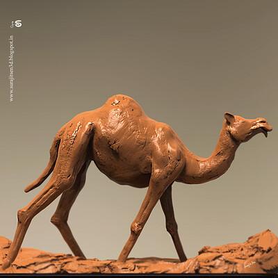 Surajit sen camel block quick sculpt surajitsen feb2019