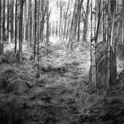 Adrian smith boar scenic bg drawing