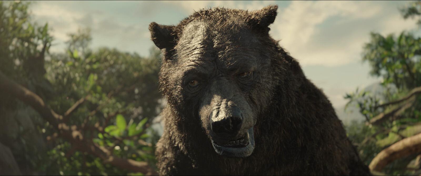 Baloo close up 01