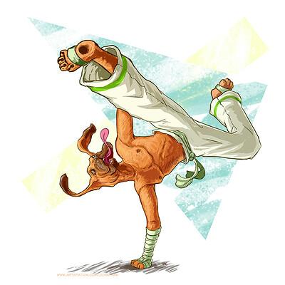 J chapman dog fighter