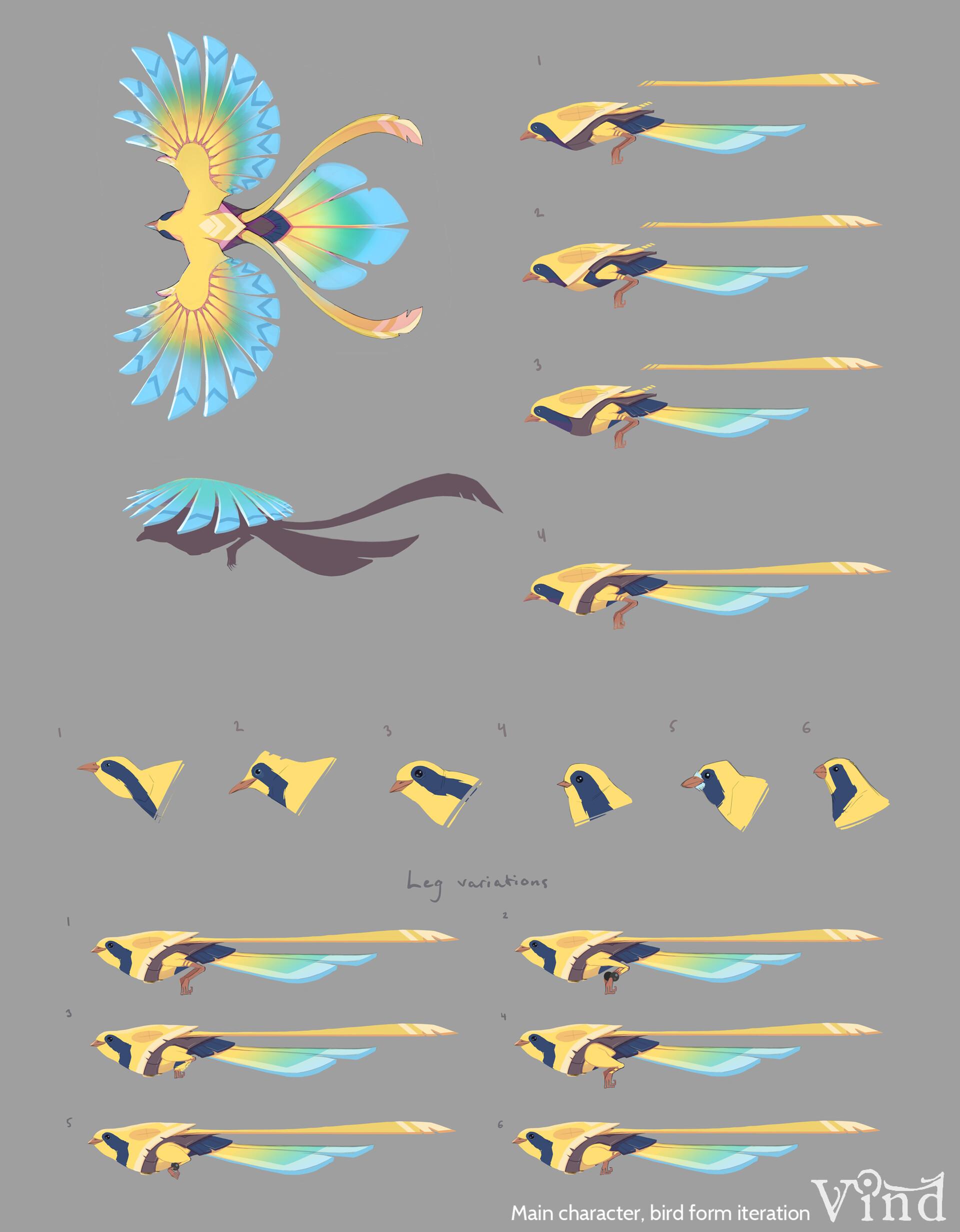 C levall bird 2