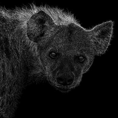 Patrik roy hyaenidae v1 0 1600x1131