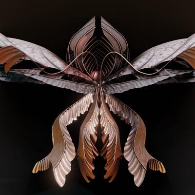 Ehule stille moth 001