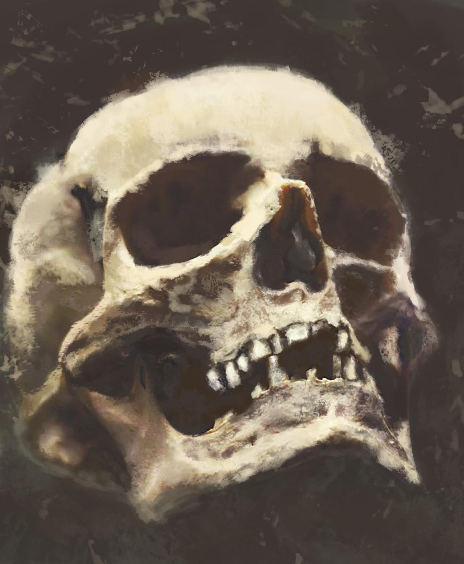 George mylonas skull copy