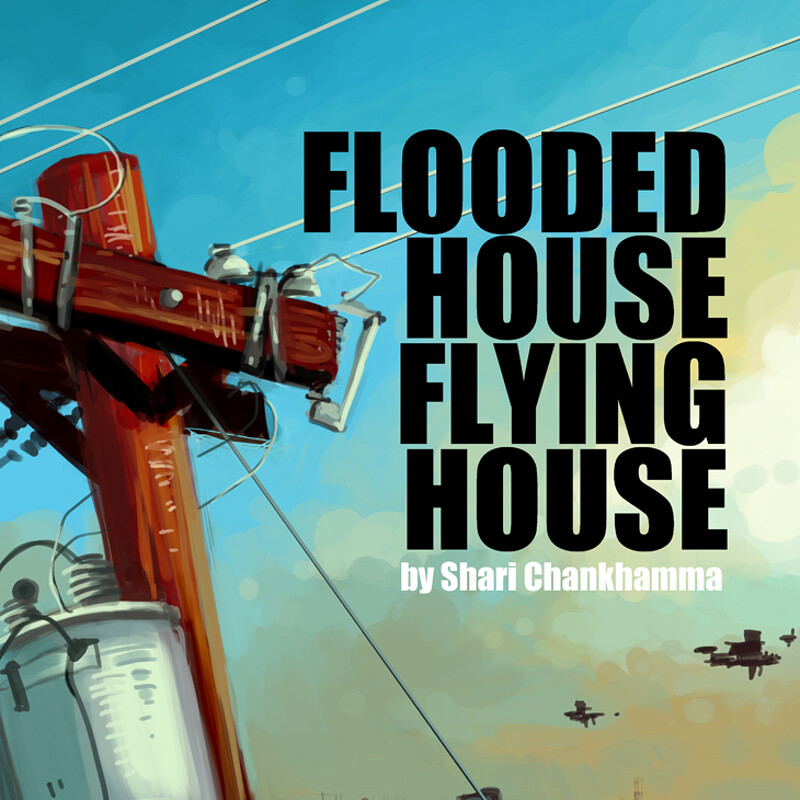 Flooded House, Flying House