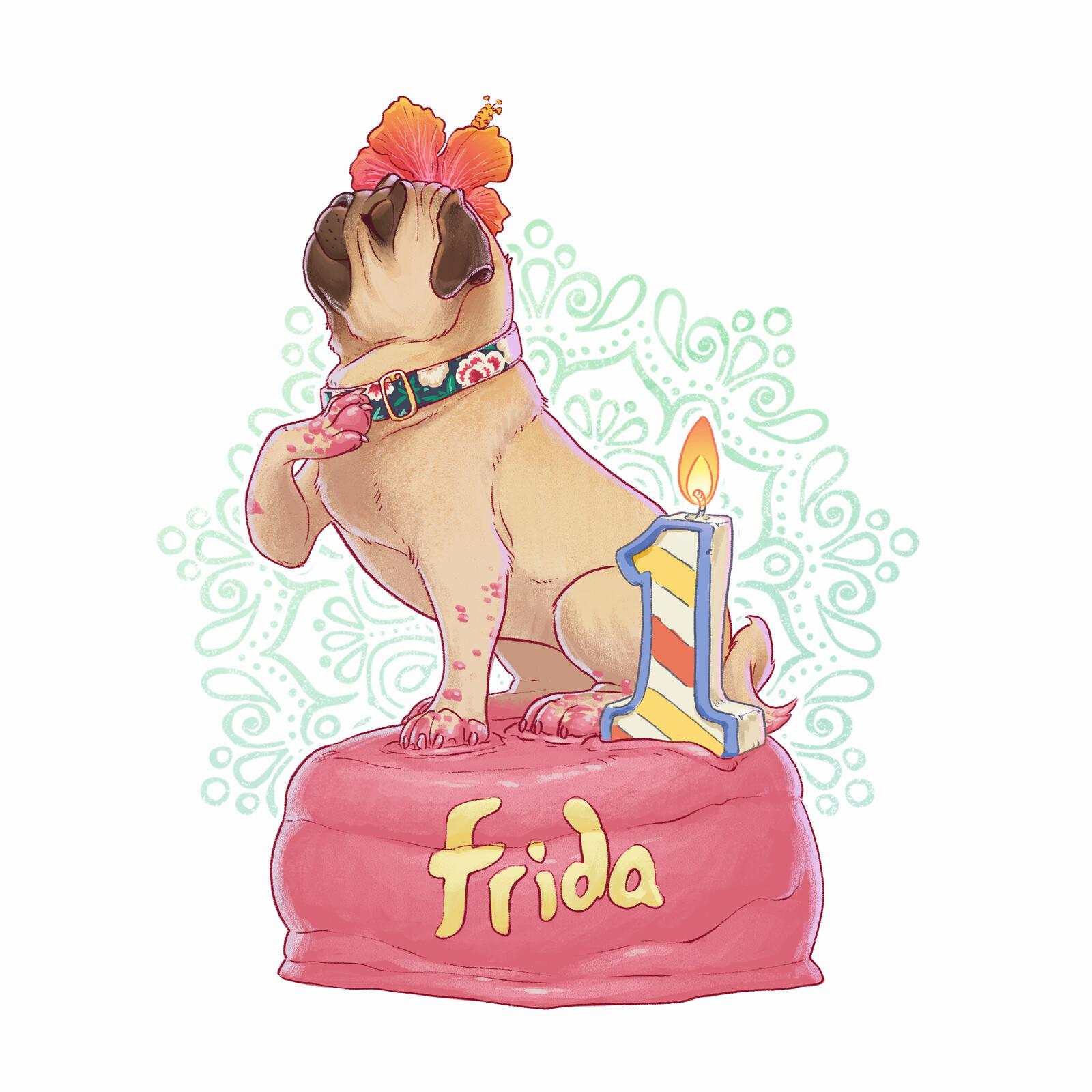 A birthday pug named Frida