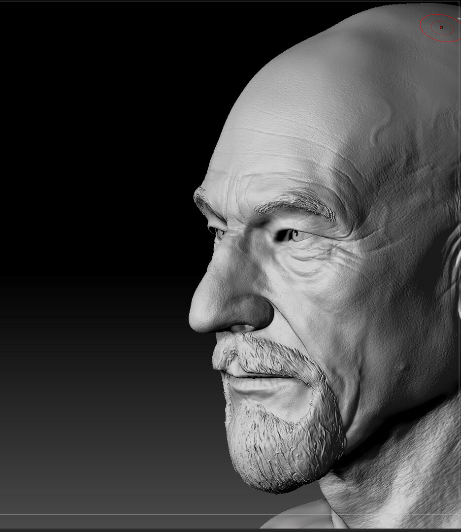 Digital Portrait,  Sir Patrick Stewart