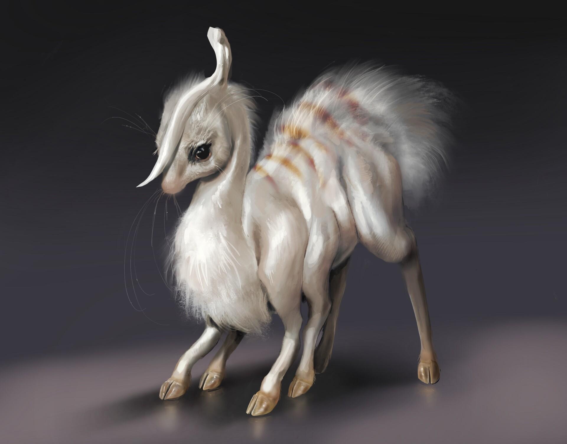 Negoō lamb (baby)