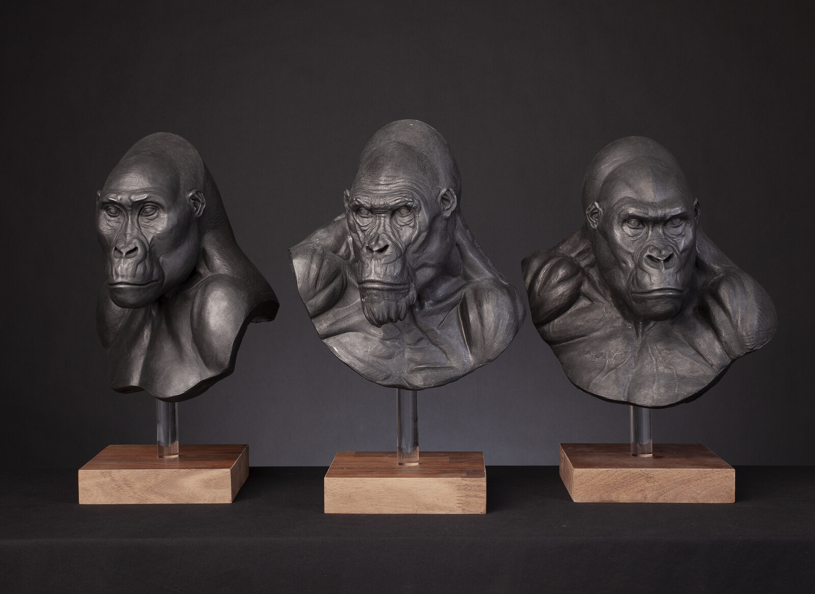 The Legend of Tarzan / Approved Mangani Concept Maquettes