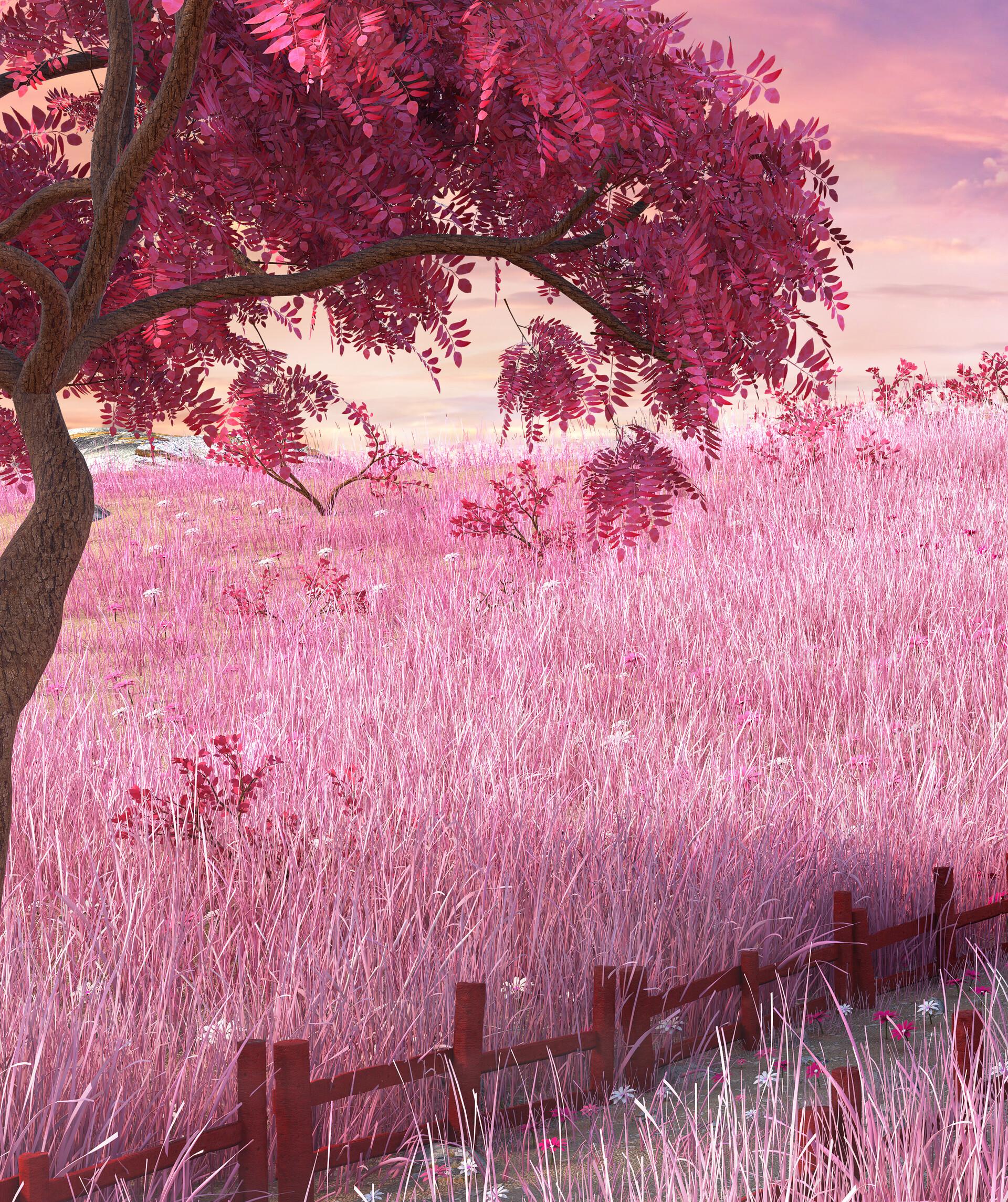 Marc mons meadow2