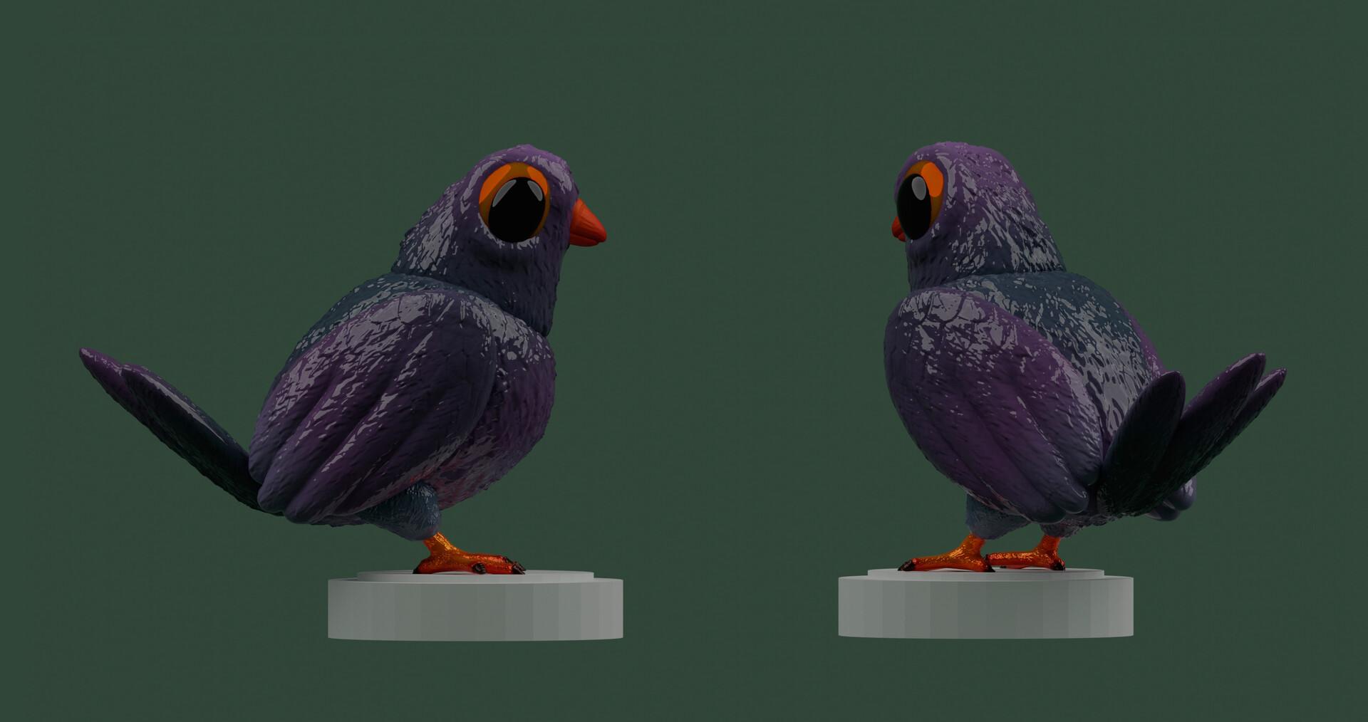 Marcos torres pigeon7