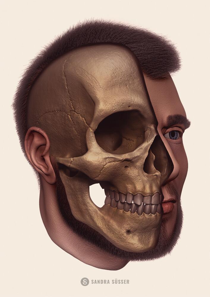 3D Head Rendering