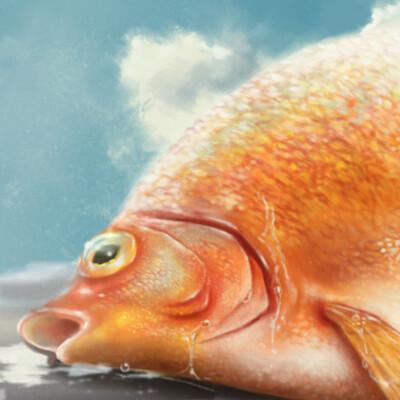 Liting ng goldfish