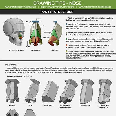 Drawing tips nose