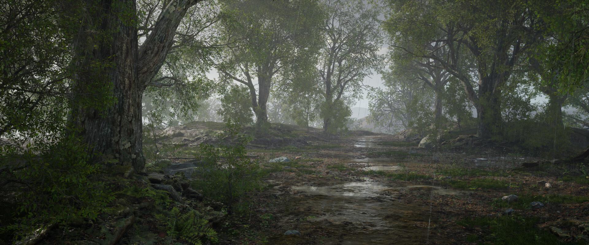 B o w qin forest land rain07