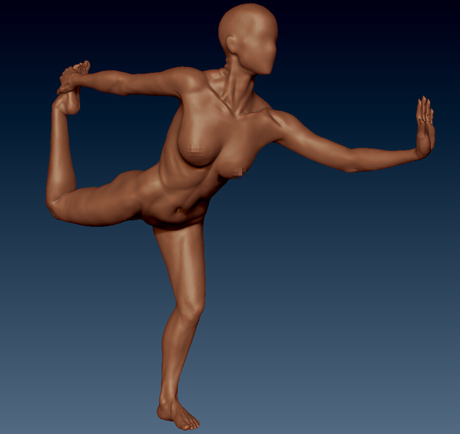 Female Anatomy WIP
