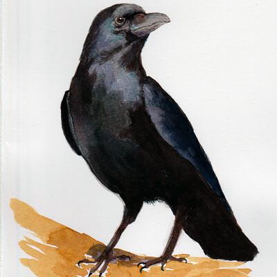 Ergo proxy crow watercolor