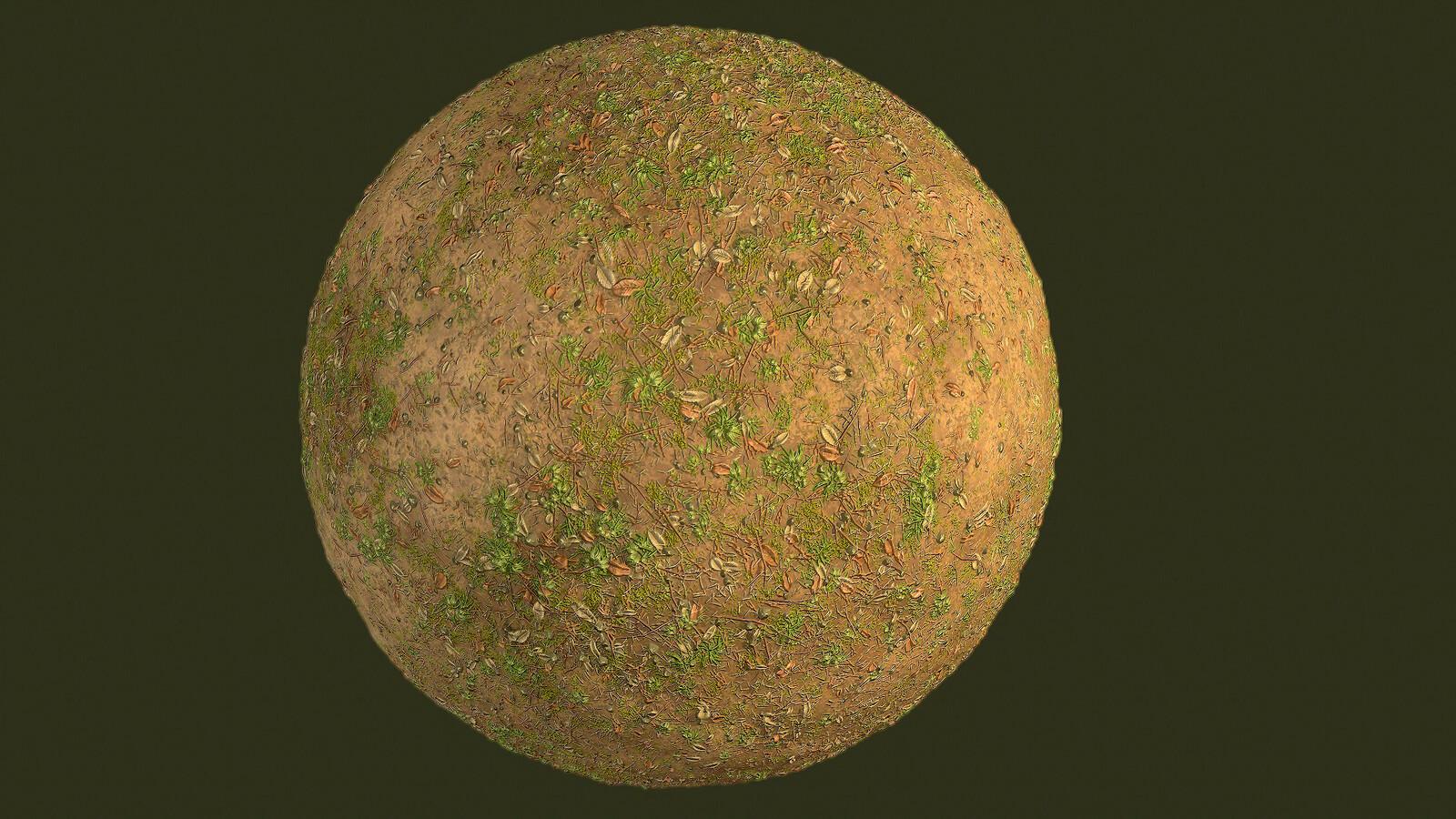 Grass Rough