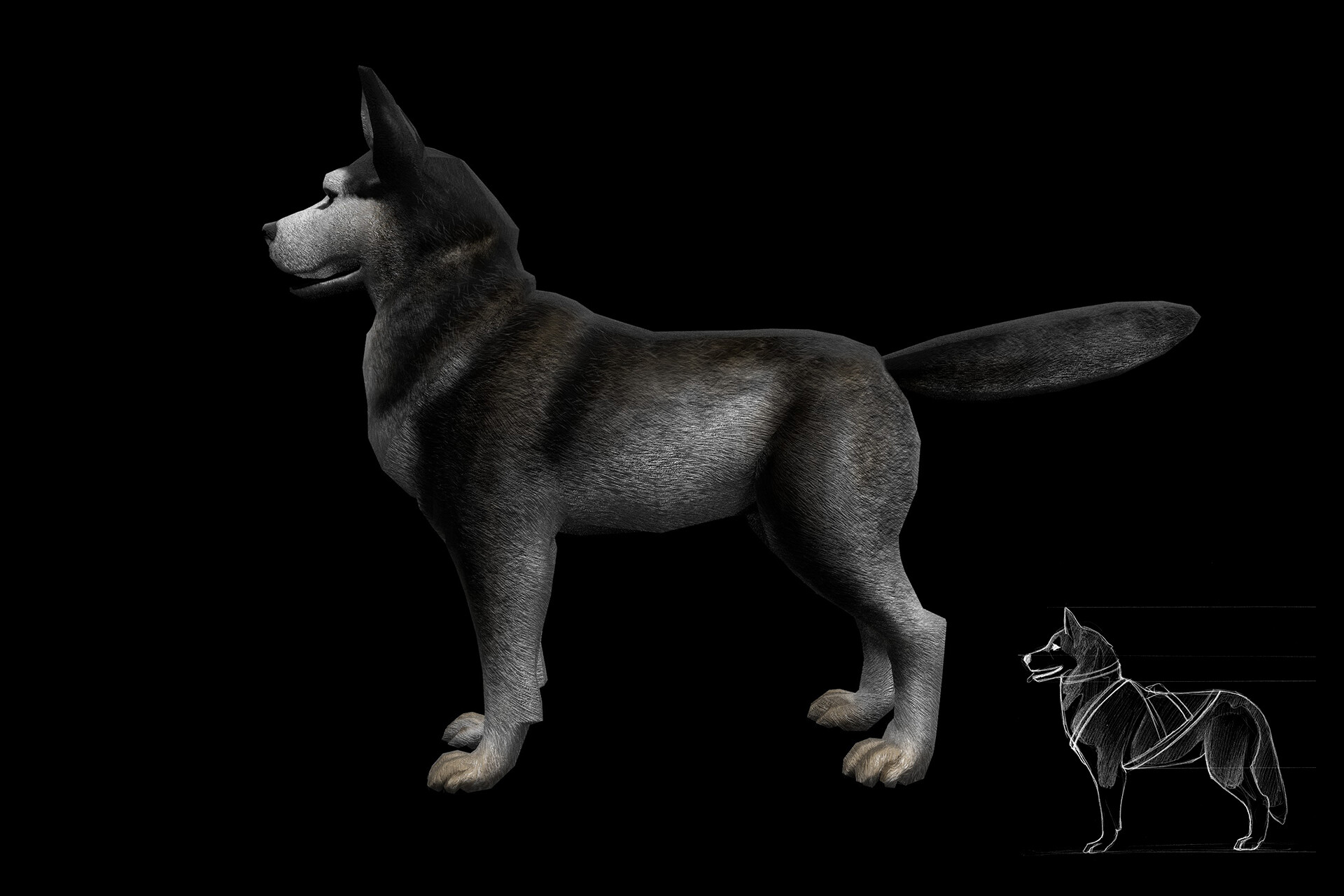 Dog model with reference sketch