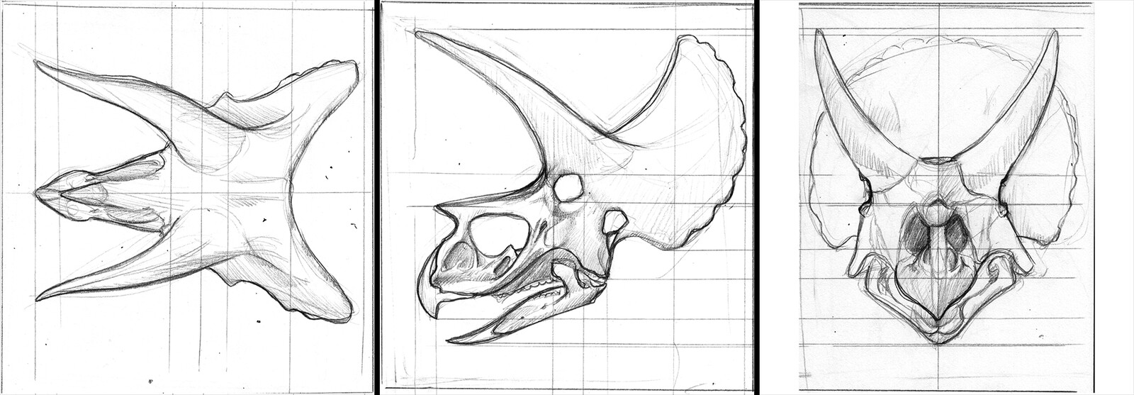 Reference sketched for image planes