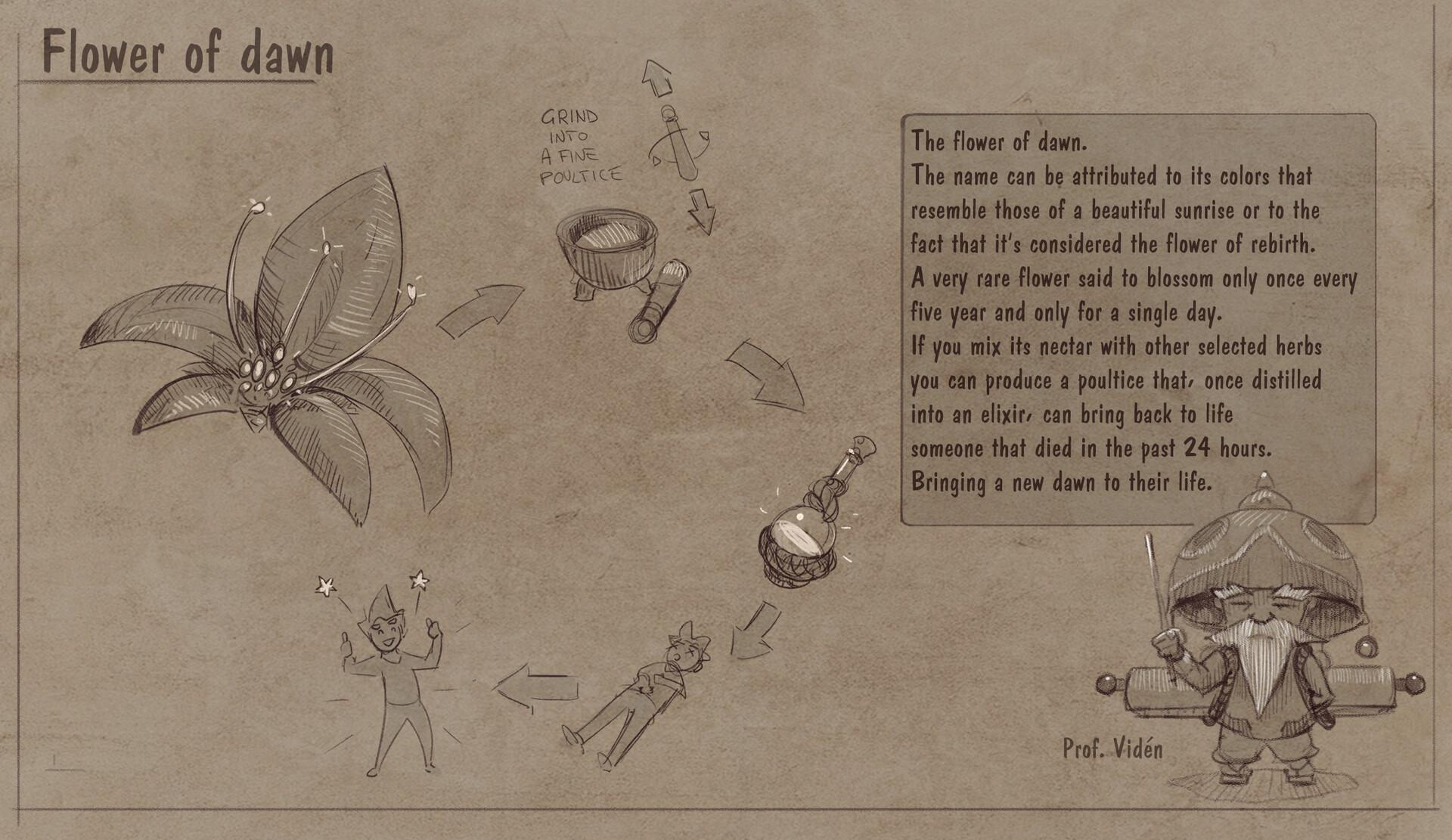 Roberto gatto callout flower of dawn