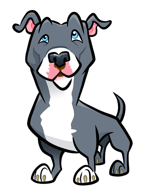 Blue Pit Bull